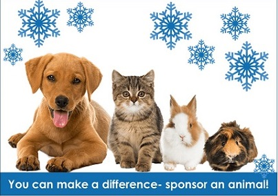 A Great Gift- Sponsor a Pet!