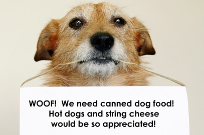We desperately need canned dog food!