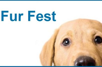 Save the Date! Fur Fest is October 13