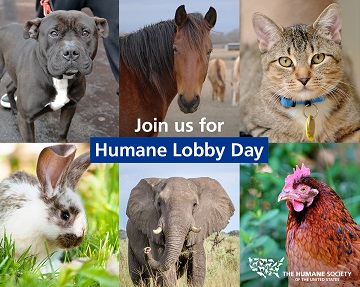 Join us for Humane Lobby Day
