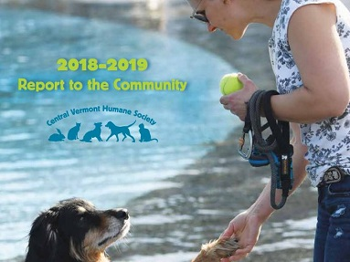 Our 2018-2019 Annual Report is here!